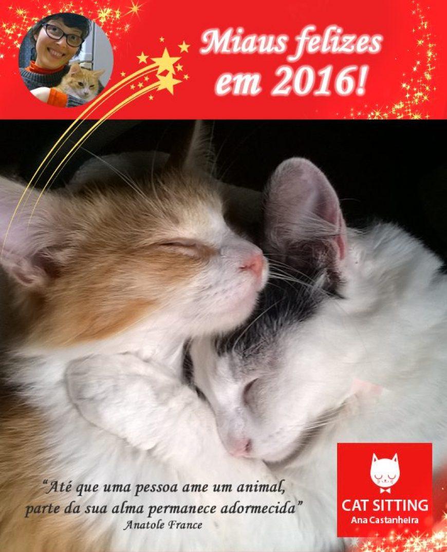 Miaus felizes em 2016