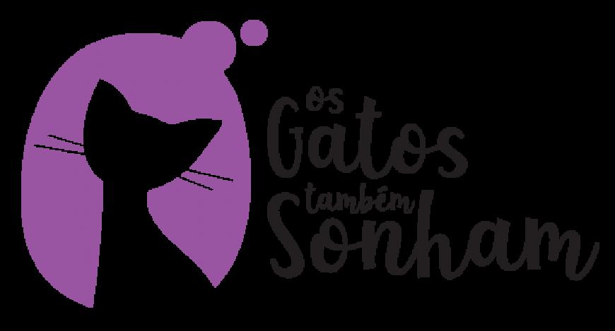 Os gatos também sonham – Cat sitting ao domicílio no Funchal